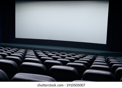Cinema hall with white screen and black row chairs. Concept of empty cinema hall.