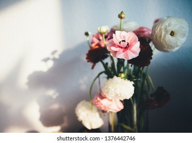 Cinematic beautiful ranunculus bouquet flower in vase against white wall with shadows of the flower from warm summer light
