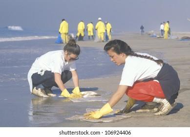 CIRCA 1990 - Two women participating in an environmental clean up in Huntington Beach, California