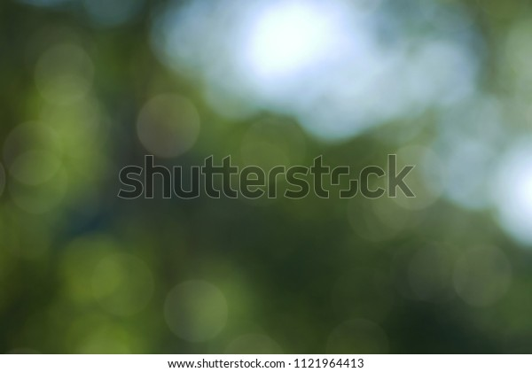 circle bokeh background of dark natural green color with white zone