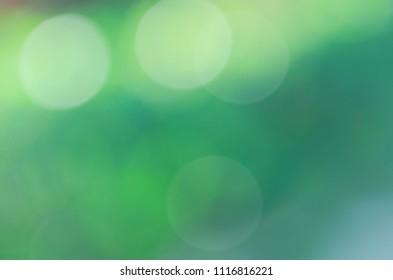 Circle bokeh sunlights on the green garden backgrounds