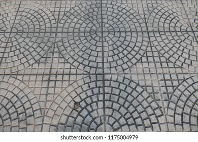 Circle, curve and square pattern of concrete pavement with a dried flower seed.