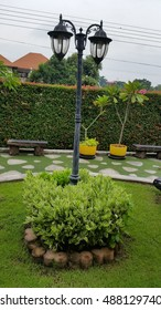 Circle green bushes, green bush for garden design and decoration