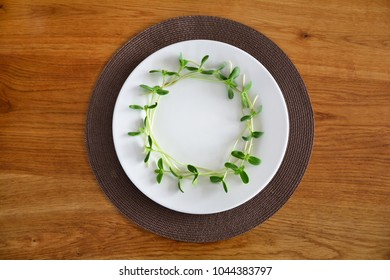 circle of green sunflower sprouts served on a white plate