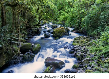 Circle of life, the flowing river through the rain forest in Costa Rica