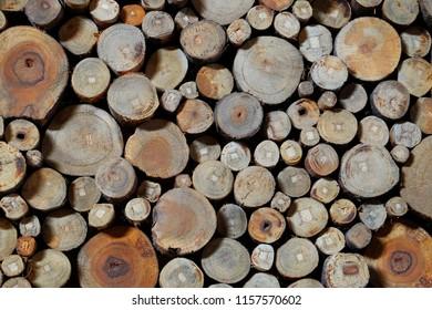 circle pattern on wood
