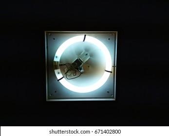 circular fluorescent lamp, light in the dark