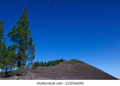 Circumpolar in Gáldar Pines