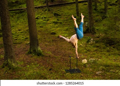 Circus performer balancing on one arm in a green forest
