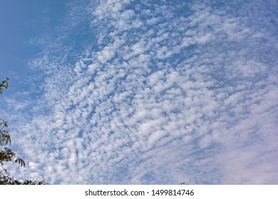 Cirrocumulus Stratiformis and altocumulus Clouds in a Bright Blue Sky with a bit of haze in the foreground