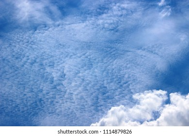 Cirrus clouds with cumulus clouds photographed close-up form an abstraction - ghost forest.
