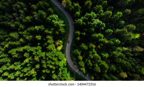 Cirvy lane road in forest, aerial top down view from drone.