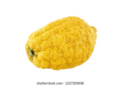 A citron fruit isolated on a white background. Citrons are available all year round. They are a versatile ingredient for different uses for many cultures.