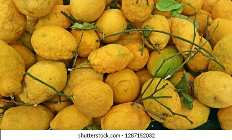 Citron fruits, Citrus medica is the scientific name, with leaves and branches. Food background.