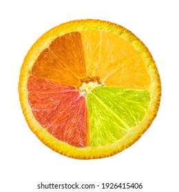 Citrus fruit. Collage of orange, lemon, lime, grapefruit slices isolated on a white background