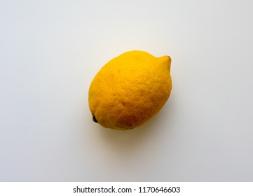 citrus fruit. lemon. On white background