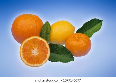 citrus fruit on light blue