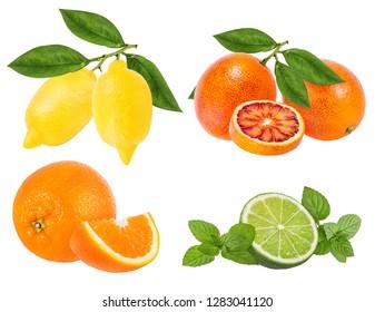 Citrus Fruit Set orange, lime, lemon isolated on white background