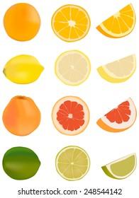 Citrus fruits - orange, lemon, grapefruit, lime