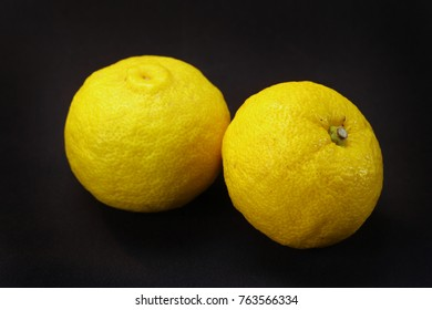 Citrus junos or yuzu is a citrus fruits on black background.