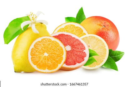 citrus mix isolated on a white background