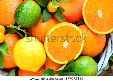 Citruses, oranges, lemon, kumquats, lime, mandarin, grapefruit. Fresh citrus fruits background.