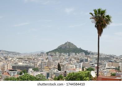 Die Stadt Athen und eine Palme