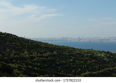 A city away from the forest appears. princess islands from istanbul