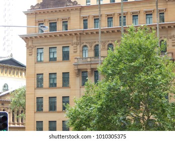City Building with Trees surrounding