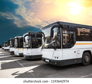 city buses in a row in a parking lot under a sunny, cloudy sky