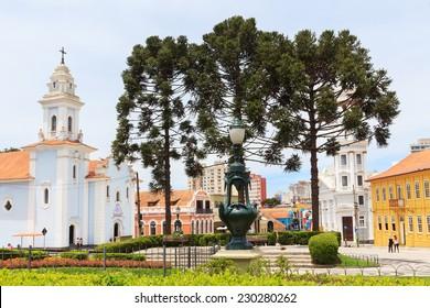 City center of Curitiba: Square Garibaldi, Church Rosario, three trees Araucaria angustifolia (Brazilian pine), state Parana, Brazil