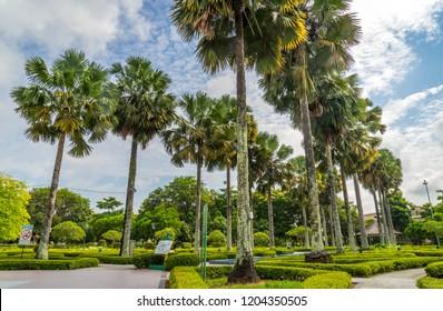 City Fan Park Miri, Sarawak.