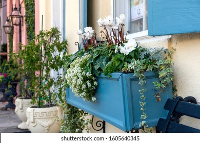 In a city of gardens, this beautiful, flower filled blue planter box is seen in the historic district of Charleston, South Carolina, a popular slow travel destination in the southern United States.