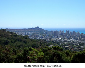 The city of Honolulu from Diamond head to Manoa with Kaimuki, Kahala, and oceanscape visible on Oahu on a nice day from high in the mountains with tall trees in the foreground.