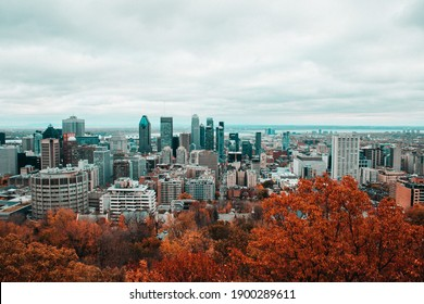 City Landscape during fall season (Montreal)