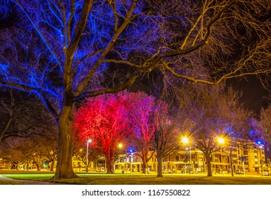 City lights are bright and colorful in Latimer Square, Christchurch, at night