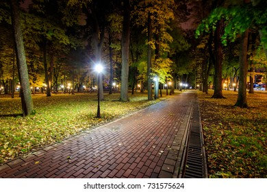 City night park in autumn after the rain with paths strewn with fallen yellow leaves and trees. Landscape.