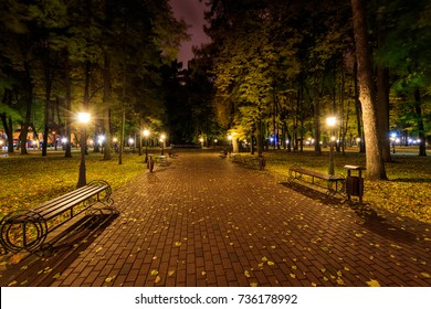 City night park in autumn with paths strewn with fallen yellow leaves and trees. Landscape.