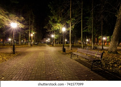 City night park in autumn with paths strewn, fallen yellow leaves, benches, lights and spruce trees. Landscape.