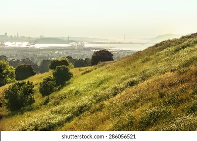 city of Oakland from the cemetery hills, nature landscape background, Panoramic view of San Francisco Bay and the Oakland Hills