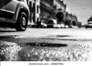 City on a sunny day, a quiet city street after rain on which passing car. View from the level of asphalt, in black and white tones
