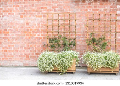 City park background. Red brick wall with wooden pergola with flowerbed