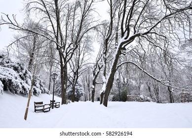 City park covered in fresh white snow