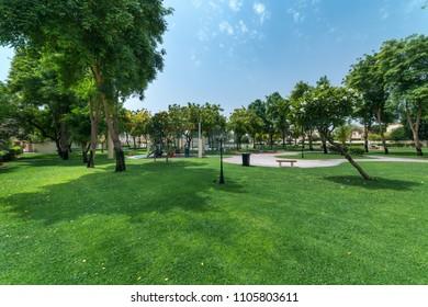 City Park Environment
