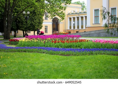 City Park: flowers and trees