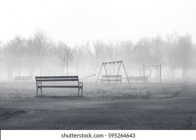 city park in foggy morning - bench in park in foggy morning