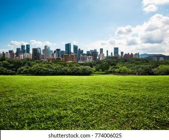 City  park   grassland  in  spring