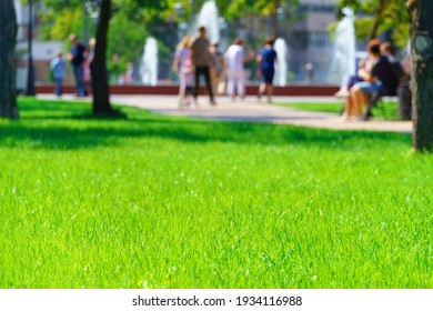 city park on a summer day, green lawns with grass and trees, paths and benches, people walking and children playing, bright sunlight and shadows