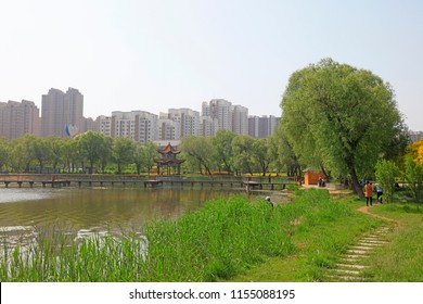 City park scenery, China