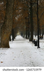 City park in the Slovak city